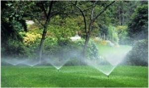Irrigation-1